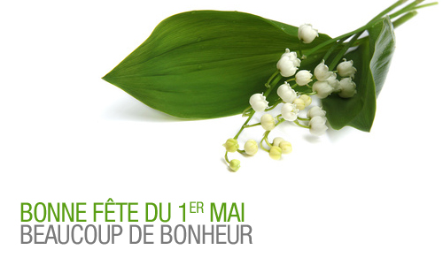 Muguet du 1er mai en vente chez Night & Day !